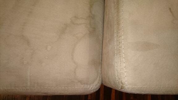 Znalezione obrazy dla zapytania jak usunąć plamy moczu z kanapy